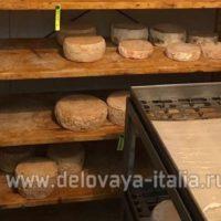 Итальянские сыры ; Созревание
