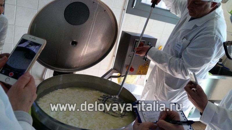преобрести оборудование для сыроварни