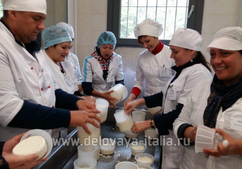Школа сыроделия для производства итальянских сыров