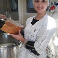 Курсы по производству сыров на русском