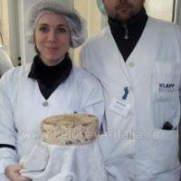 сыроварня в России 8