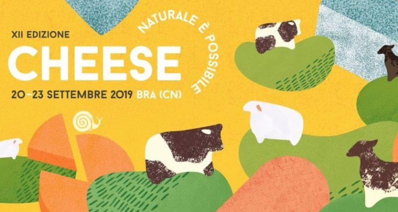 bra cheese exhibition